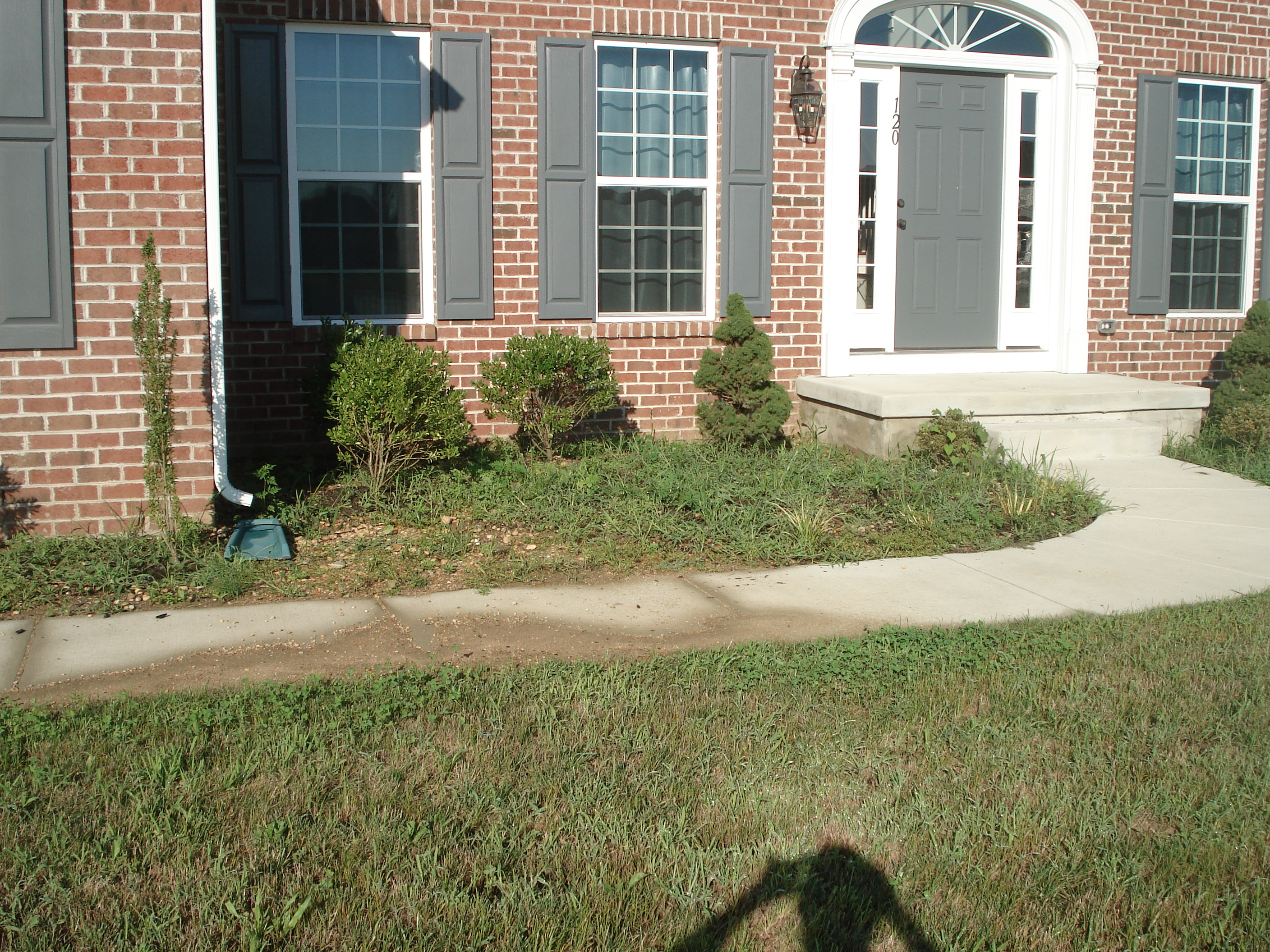 how to get rid of nutgrass in flower beds