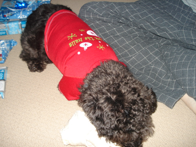 deck the halls dog sweater