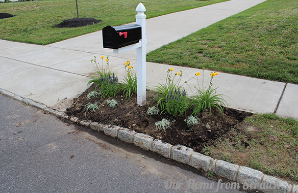 painted mailbox flower bed