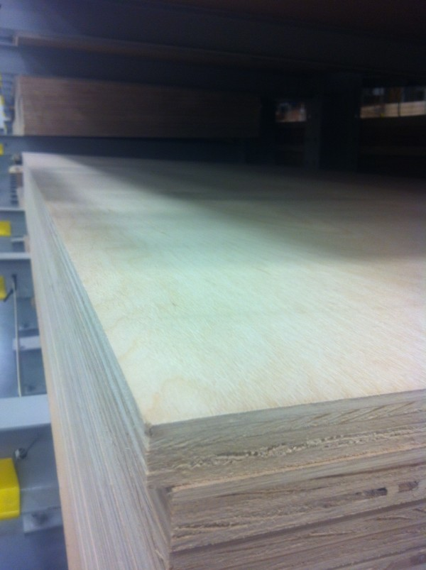 birch hardwood plywood